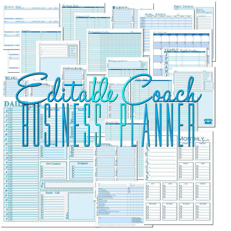 Edit-able Coach Business Planner