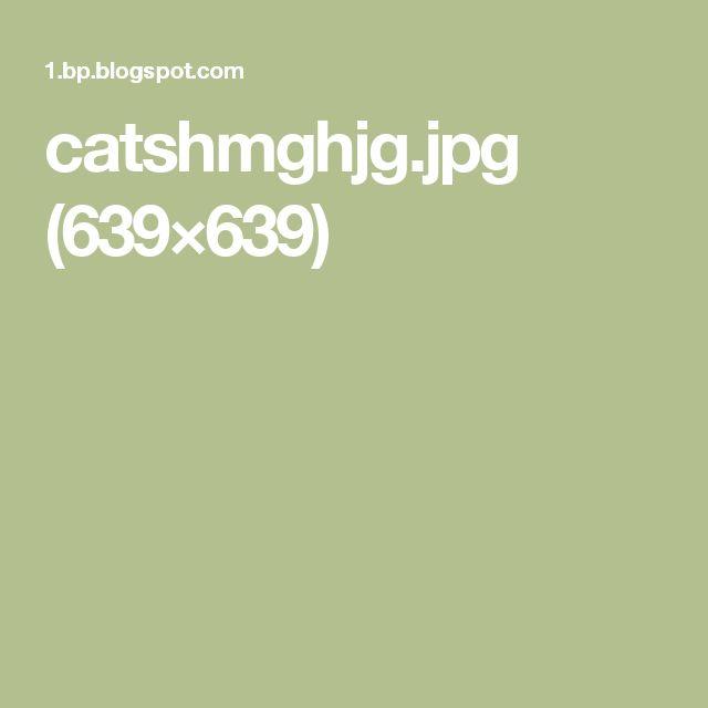 catshmghjg.jpg (639×639)