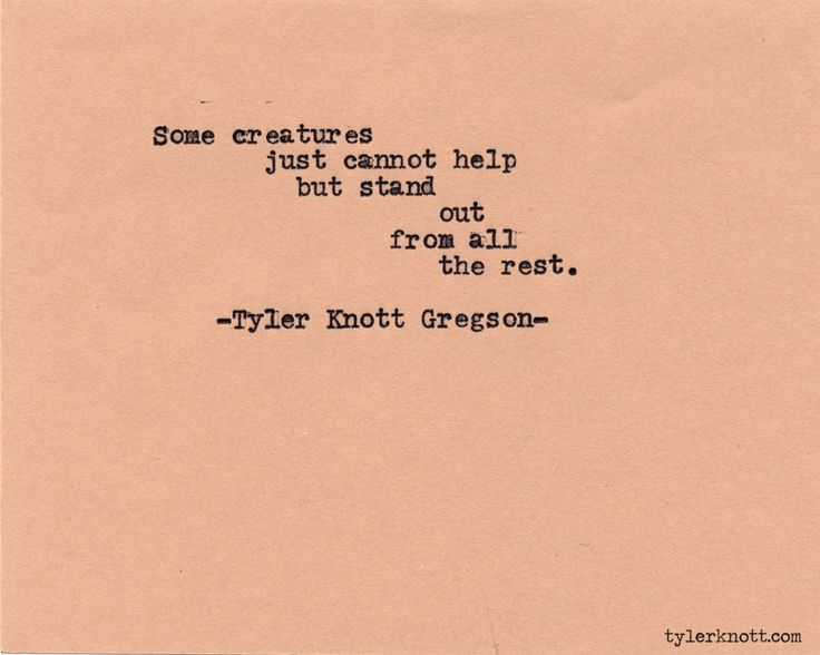 Typewriter Series #589 by Tyler Knott Gregson