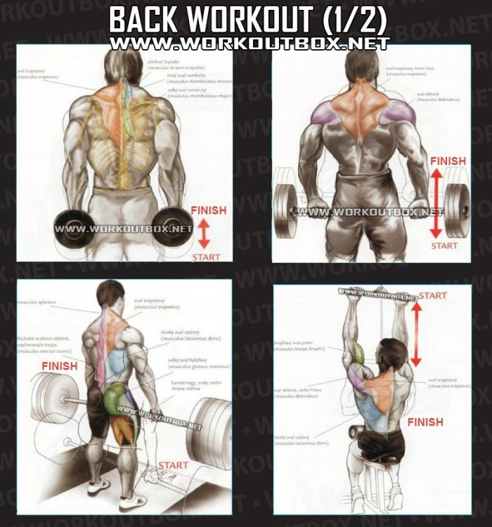 Back Workout Part 1 - Healthy Fitness Exercises Gym Low Shoulder - Yeah We Train !