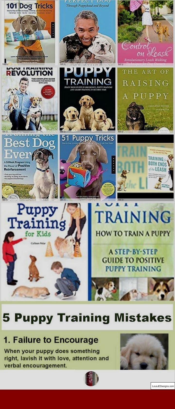 Dog Training Tips Aggression Towards Other Dogs And Pics Of How To