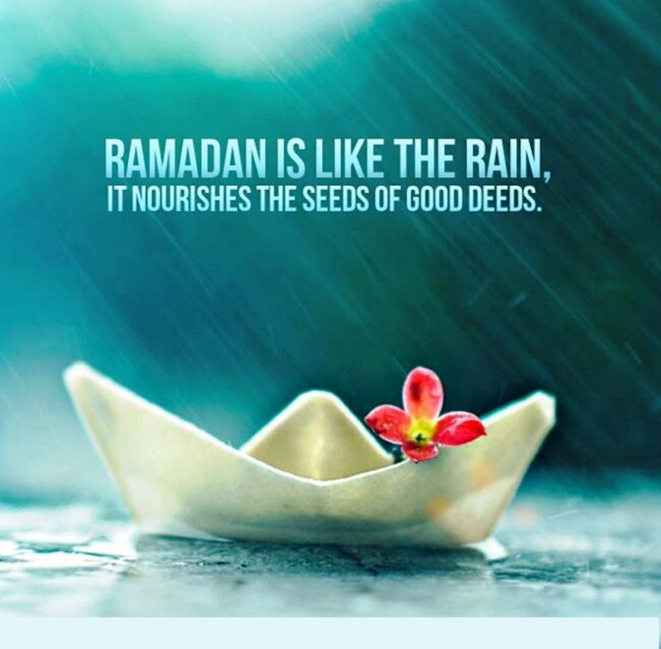 Let the goodness flow this Ramadan! Shower everything with only that which is beautiful!