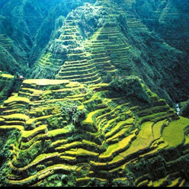 90 Best Only In The Philippines Images On Pinterest Philippines Travel Philippines And