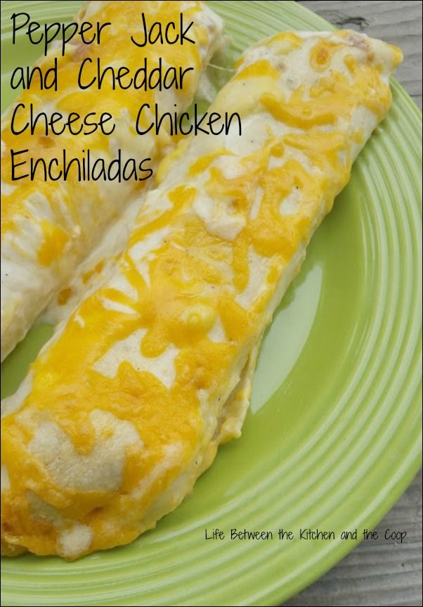 You are going to LOVE these Pepper Jack and Cheddar Cheese Chicken Enchiladas! They have a bit of a kick from the chilies and pepper jack cheese—an awesome variation of a Mexican food favorite!  They are cheesy, creamy, wonderful!  CLICK THROUGH NOW for the recipe!