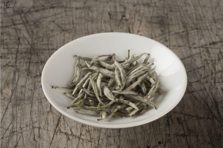 Sølvnål: Keisarleg kvit te. Bai Hao Yinzhen. Lett frisk fruktig te med lågt innhald av koffein. White tea.  www.tedragen.no  Foto: www.tbfoto.no