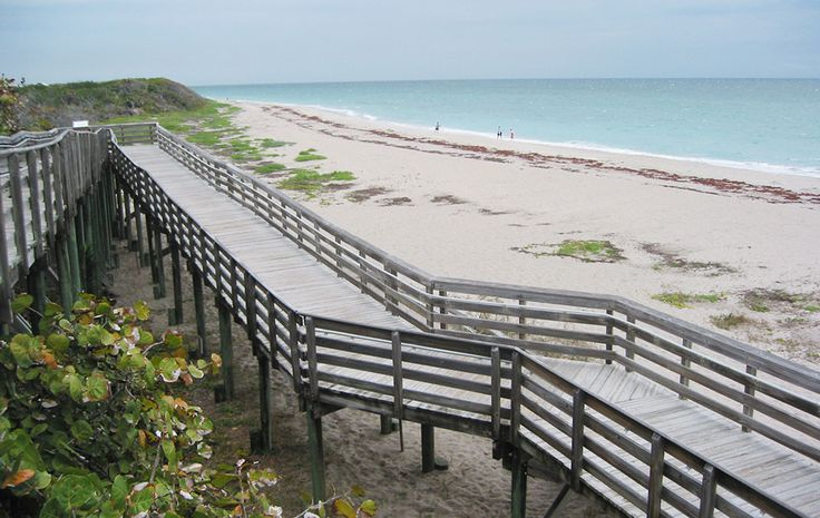 """If you're looking for a day at the beach, but without all the crowds, two Palm Beach County destinations were listed as two of the best options in the state.  Thrillist compiled a list of the """"Best beaches in Florida without crowds"""" with Palm Beach County's Juno Beach and John D. MacArthur State Park coming in at numbers four and six. The top ten also included: Caladesi Island State Park, Blowing..."""
