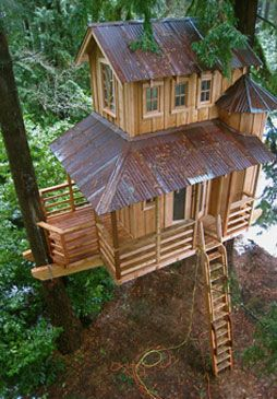 This tree house perches between a redwood and a Douglas-fir and features two turrets, a covered porch, and hand-built windows.