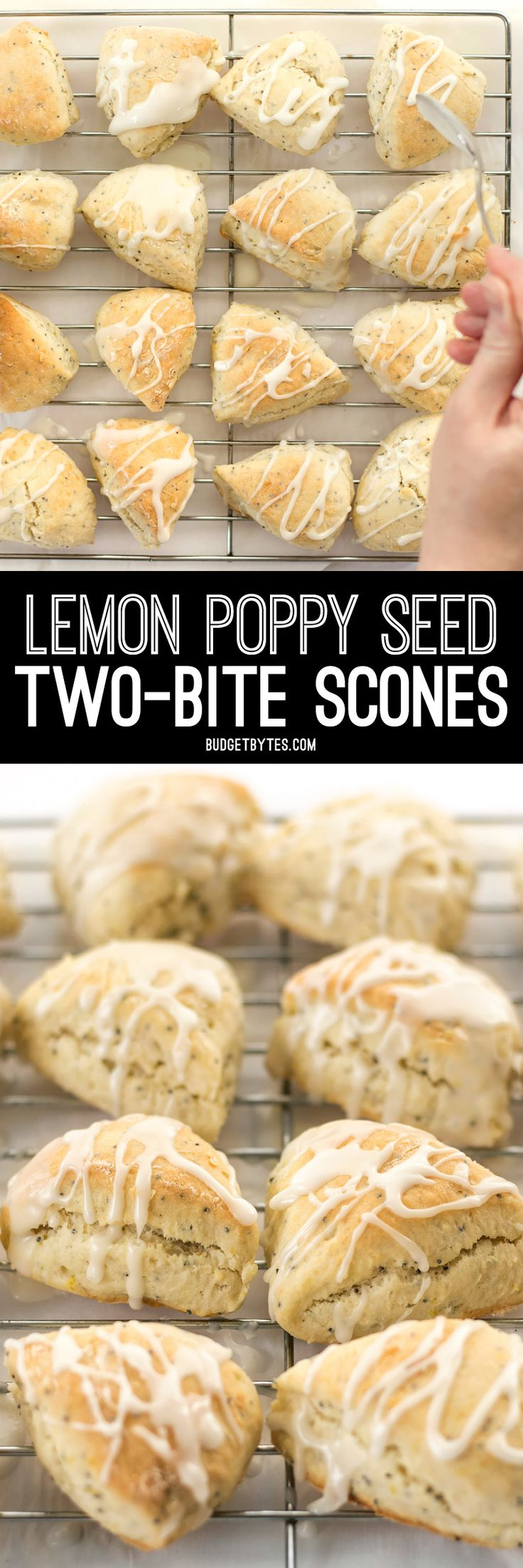 These cute little lemon poppy seed two-bite scones are soft and sweet with a deliciously tart lemon glaze. You won't be able to have just one! @budgetbytes
