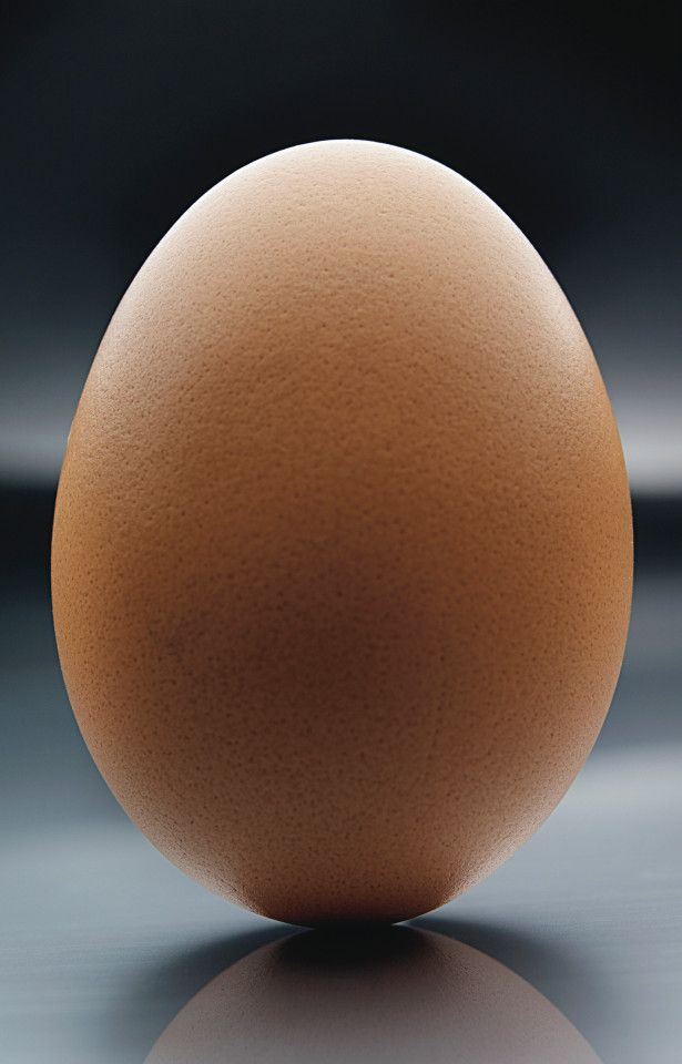 An old wive's tale says you can balance an egg on its end on the Equinox. I've never tried it. Have you?