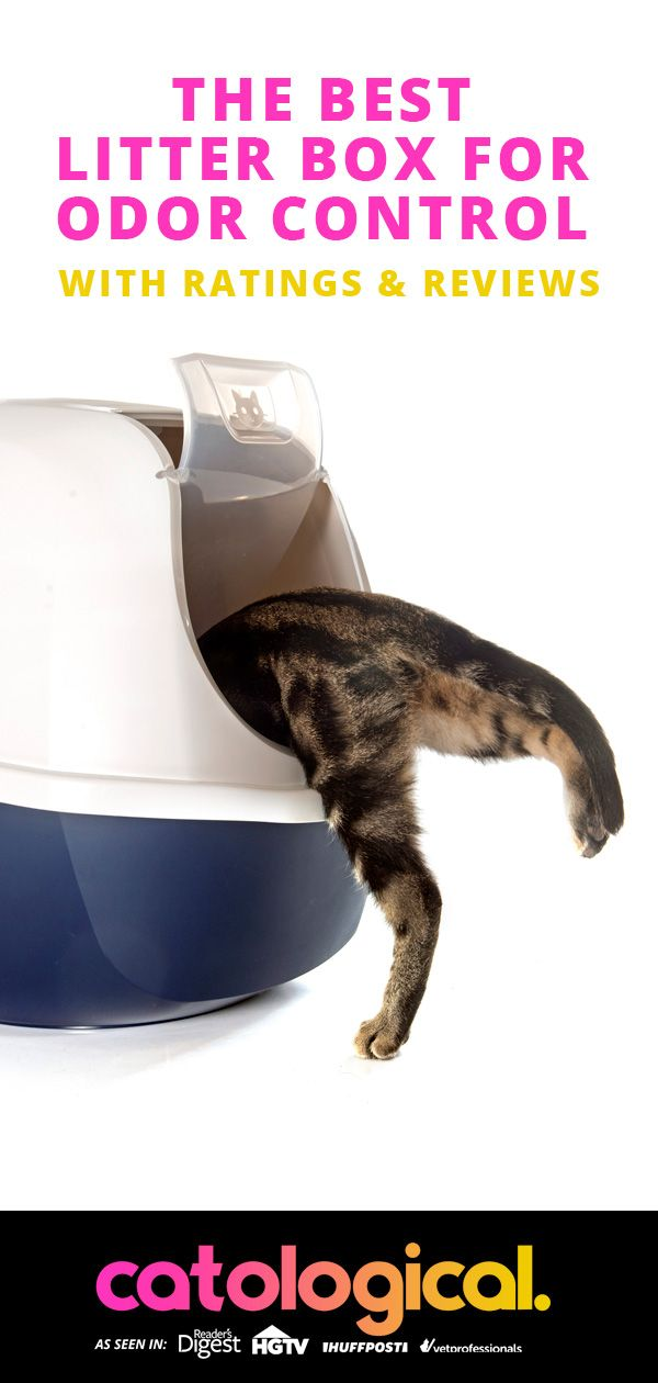The Best Cat Litter Box For Odor Control Reviews And Ratings For 2020 Best Cat Litter Litter Box Cats Smelling