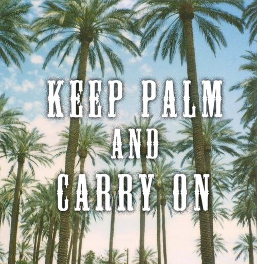 ⚓ Keep Palm and Carry On....