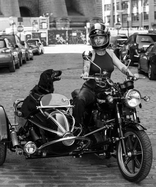 411 Best Ballin Images On Pinterest: 411 Best Images About Girls On Motorcycle On Pinterest