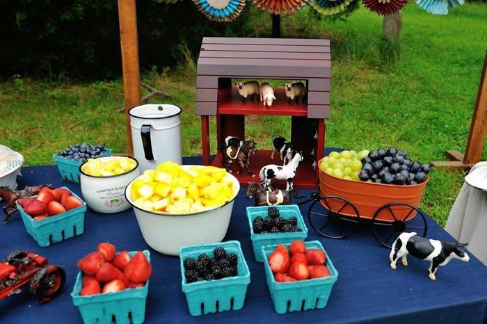 Antique Vintage Farm Party via Kara's Party Ideas | Kara'sPartyIdeas.com #Barnyard #PartyIdeas #Supplies (8)