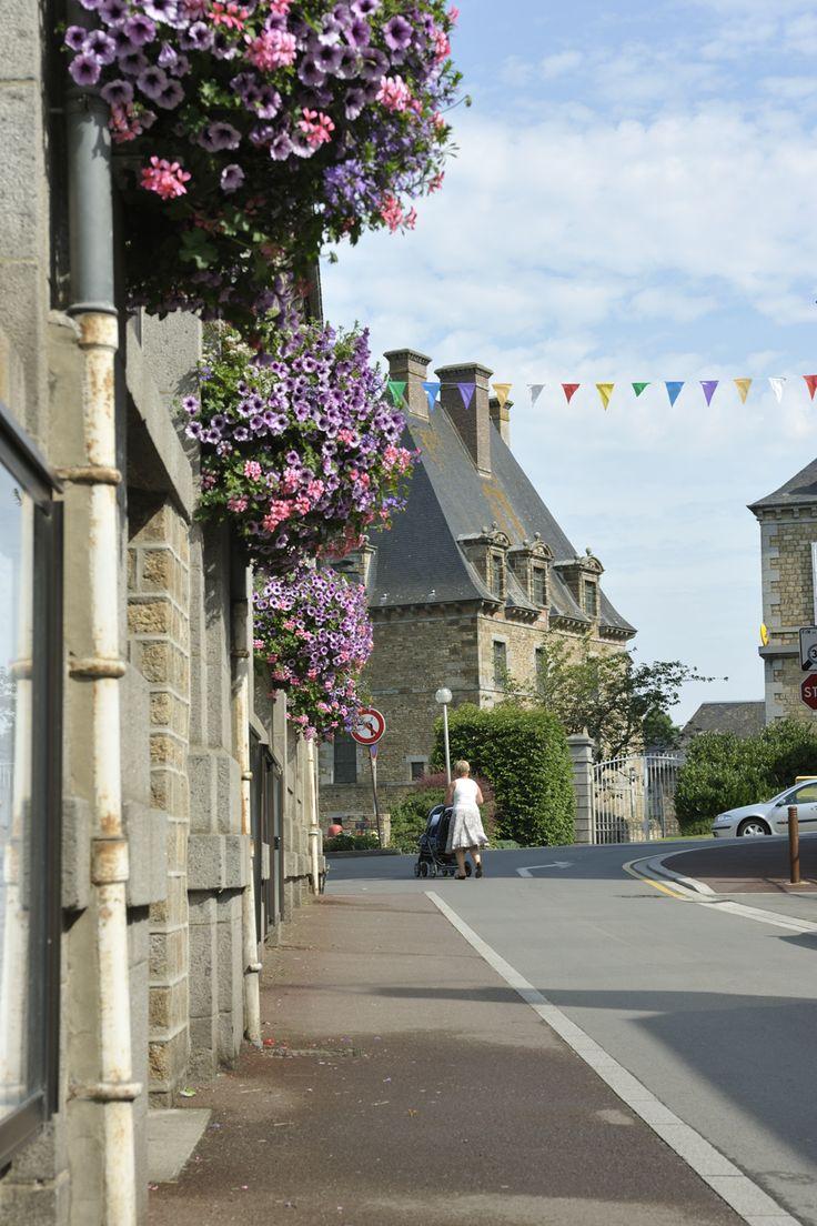 #ducey #villageetape #manche #normandie #villefleurie #fleurs #petunia