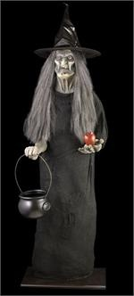 About halloween theme cats amp witches on pinterest happy halloween