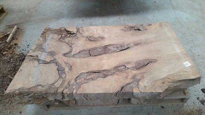 Ancient kauri stump slab