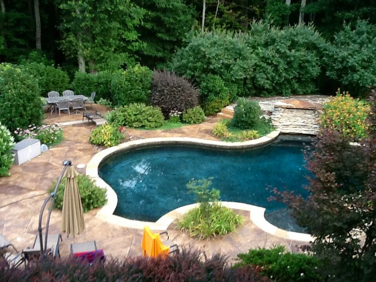 17 best images about natural swimming pools on pinterest annapolis maryland swimming pool for Can babies swim in saltwater pools
