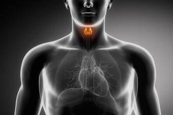 Hipotiroidismo: Causas y Tratamiento Natural
