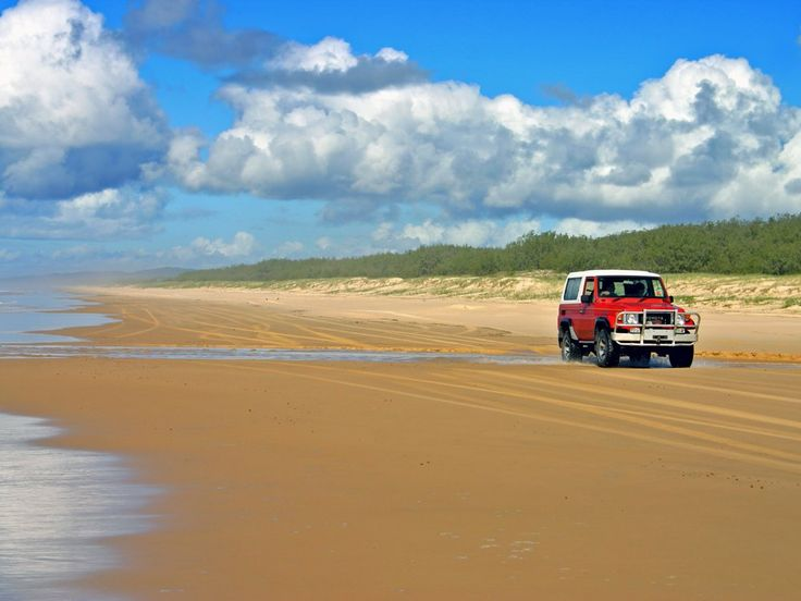 Tour the forests, beaches, and swamps of Fraser Island in a four-wheel drive vehicle.
