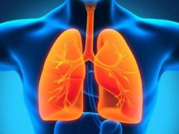 Ce alimente nu trebuie să lipsească din dieta unui bolnav de cancer pulmonar   Articole   Click sanatate