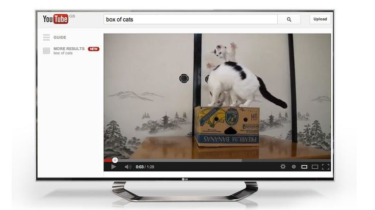 Cat videos break out with YouTube TV coming to Freesat | YouTube's myriad cat videos are coming to a subscription-free television near you as YouTube is set to launch on Freesat. Buying advice from the leading technology site