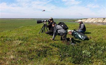 Ямальские ученые откроют летний полевой сезон