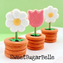 Cute 3-d cookies guaranteed to make you smile.