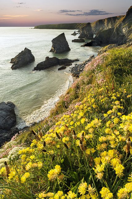 Jagged Shores, Bedruthan steps north Cornwall, England