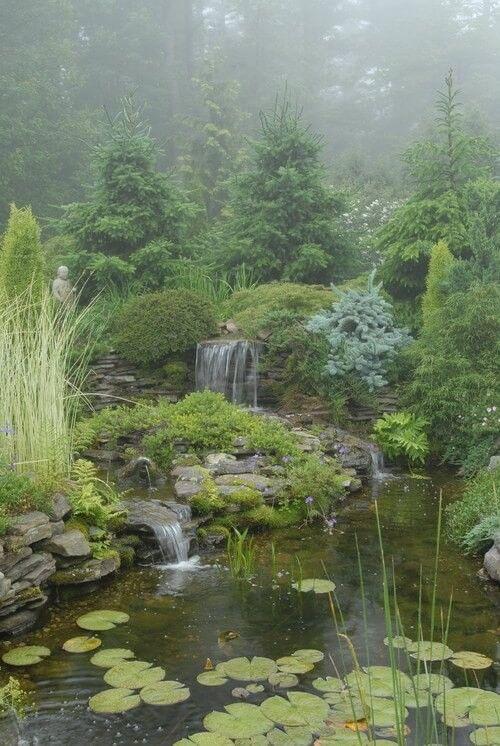 Hier ist ein großer Teich und Wasserfall, umgeben von einem üppigen und voll großer Garten. Diese Pflanzen machen diesen Raum fühlen, wild und Natur. Diese Art von Garten ist die beste Art von Garten, wenn Sie schauen, um die Natur in Ihrem eigenen Hinterhof schicker.