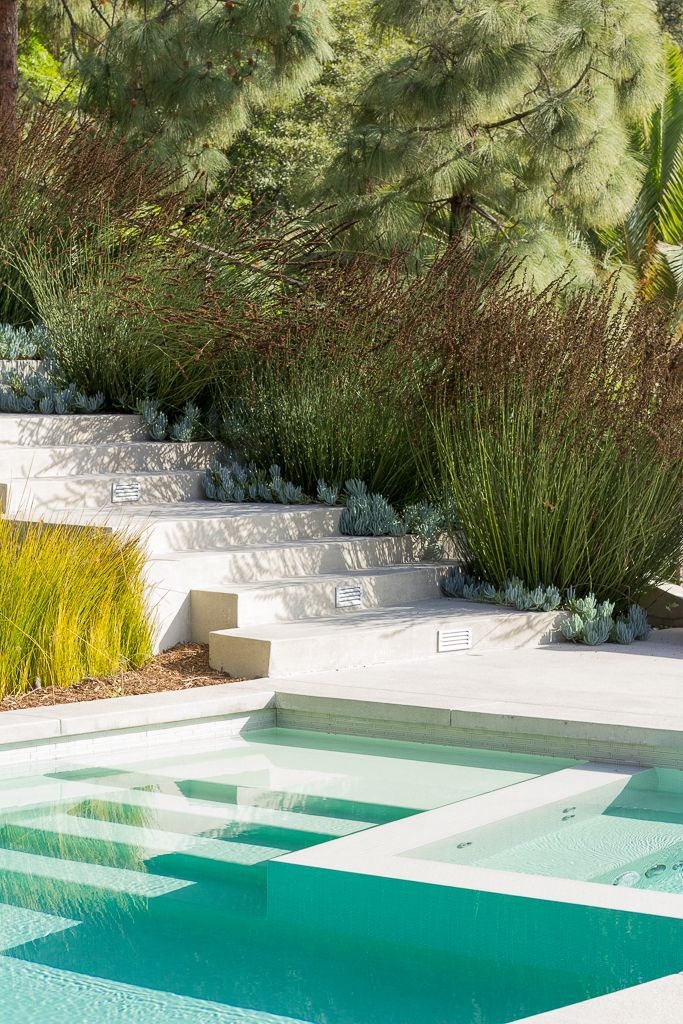 Best 25 Landscaping Around Pool Ideas On Pinterest Backyard Pool Landscaping Plants Around