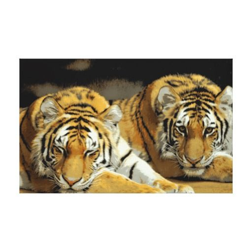 Two Tigers Stretched Canvas Print