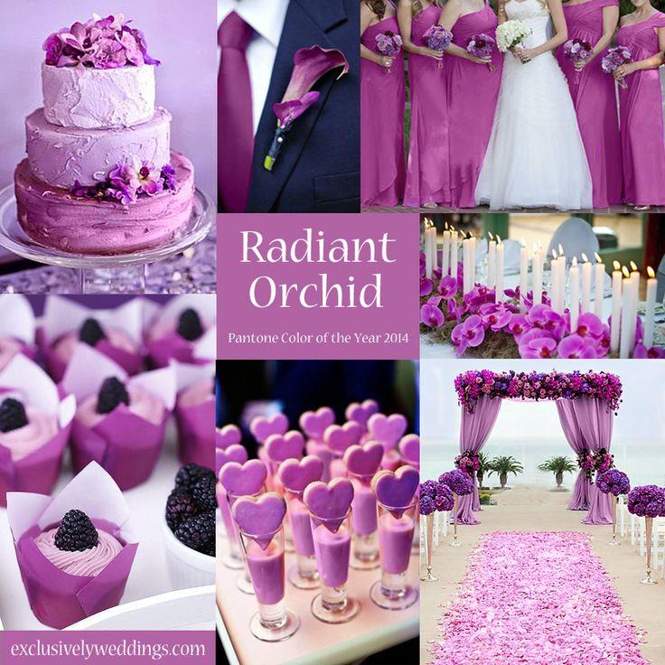 17 Best ideas about Orchid Wedding Colour Theme on Pinterest
