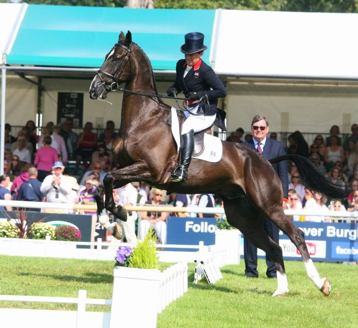 Legendary eventer and author Pippa Funnell has a few issues with her mount at Burghley Horse Trials - he's hoping she fares better at Badminton in a couple of weeks! #eventing #topriders #equestrian