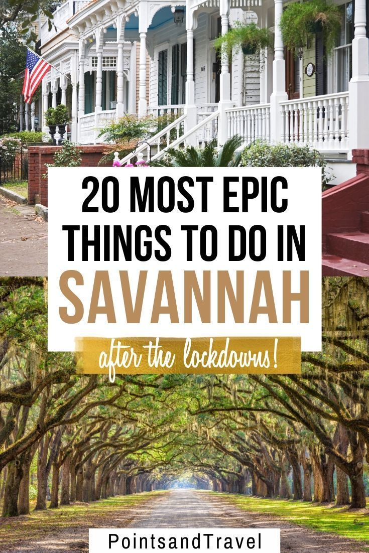 Savannah Ga Guide To The Best Things To Do Savannah Chat Travel Savannah Savannah Georgia Travel