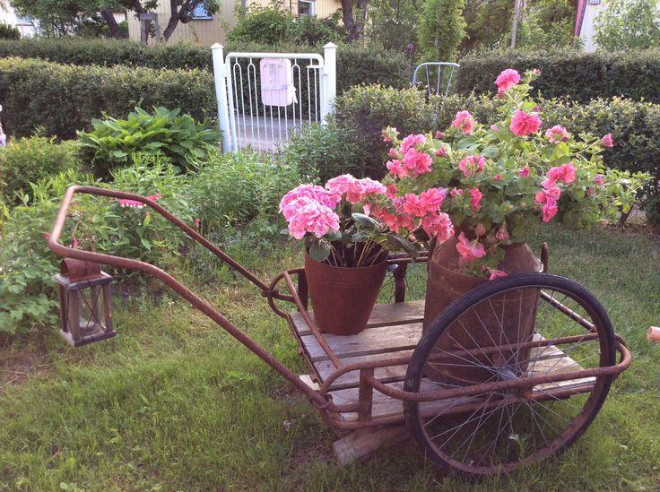 Pinkkejä kukkia maitokärryissä