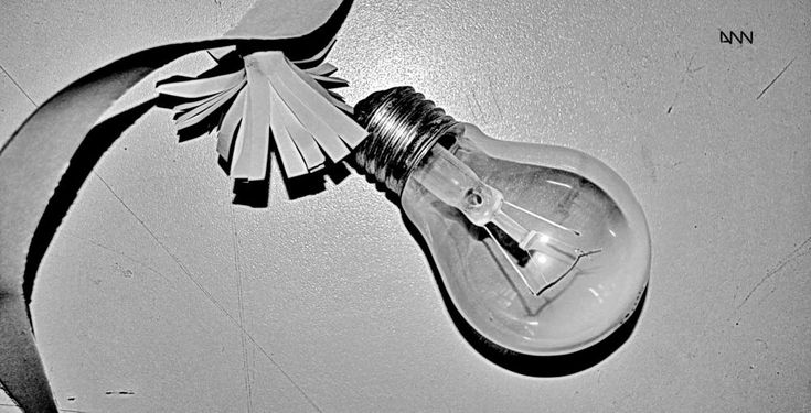 The bulb by Anton Nistor Nicolae