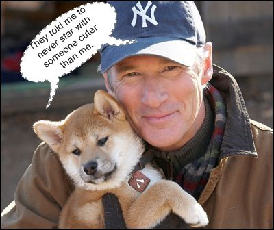 Don't know which one is cuter either Hachiko or Richard Gere .... :D