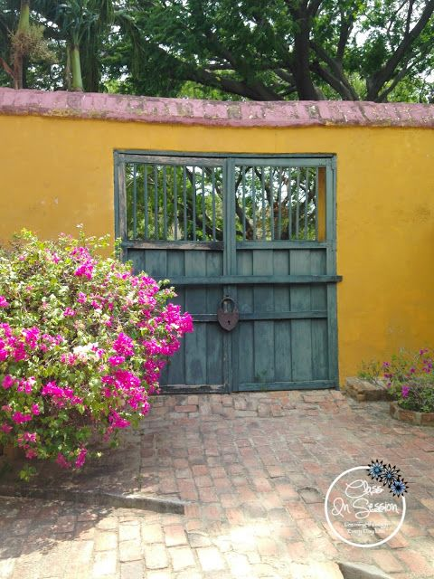 La Quinta de San Pedro Alejandrino, Santa Marta, Colombia ~  Join me in Part II of my Colombian Excursion