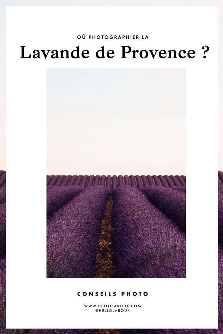 Les 25 meilleures id es de la cat gorie champs de lavande sur pinterest champs de lavande en - Floraison de la lavande ...