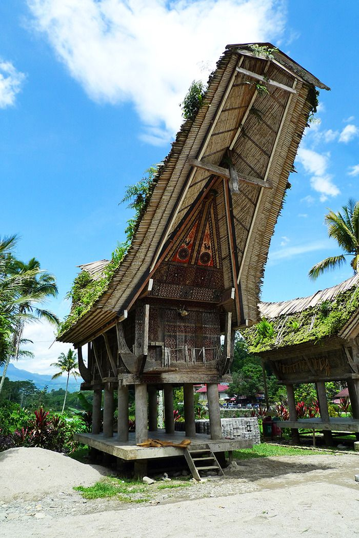 Tongkonan, The Toraja's traditional house. The higher the owner's social status, the higher the roof will be. Another symbol — the buffalo horn — is displayed in front of the house. Photo by Rahma Yulianti.