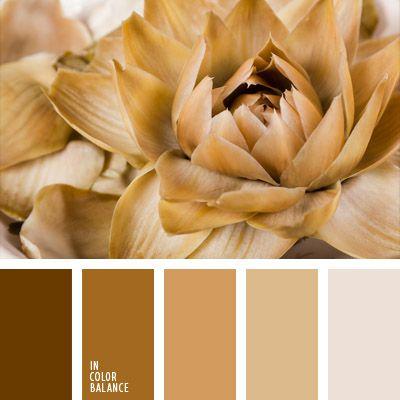 color crema, elección del color, marrón claro, marrón oscuro, marrón rojizo…