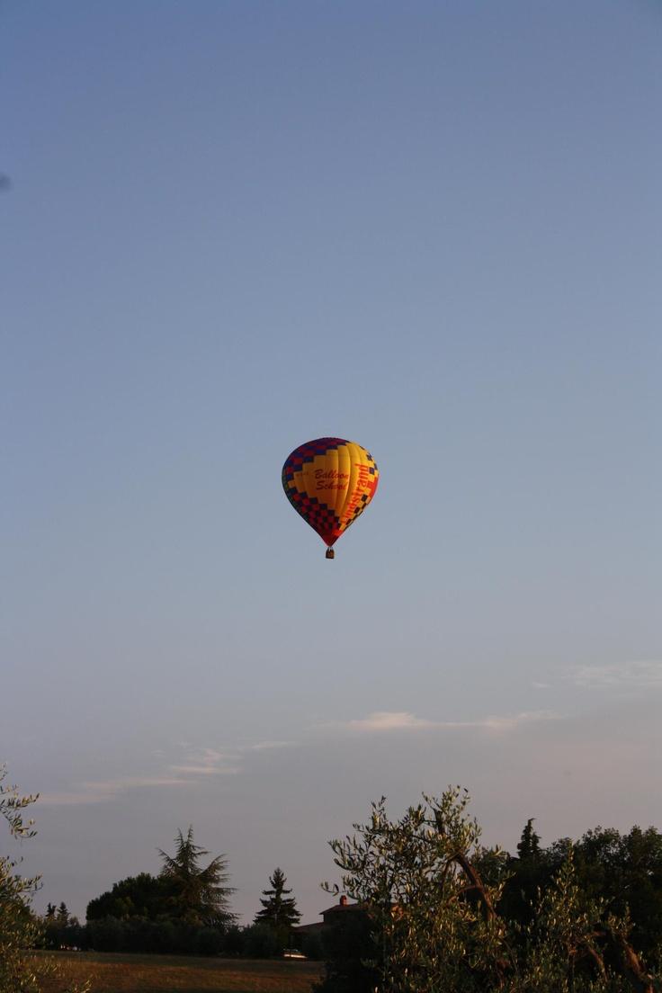 The Flight - Photo by Annagloria Puccetti Corti