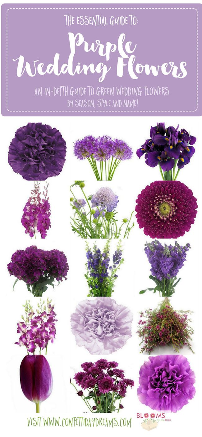 Get purple wedding flower names and ideas with pics + seasons. Save the purple flower guide: http://www.confettidaydreams.com/purple-wedding-flowers-names/