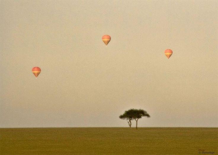 Safari în balon