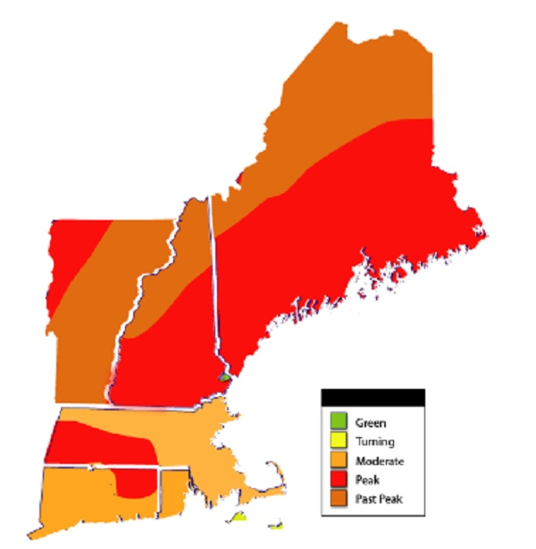 13 best New England images on Pinterest Fall foliage map New