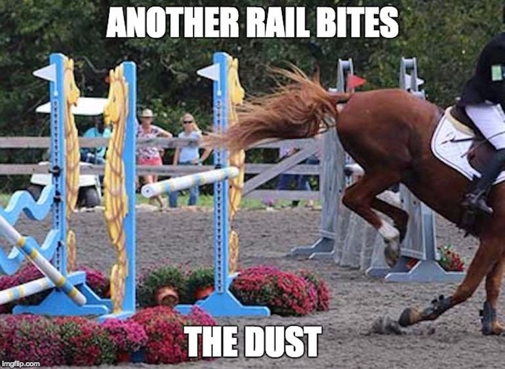 "What has your horse done that made you say ""Oh no you didn't,"" lately? Do these moments sound familiar? #TheTruthHurts #LOL https://eventingconnect.today/2017/04/20/oh-no-you-didnt-moments-every-horse-owner-has-faced/"