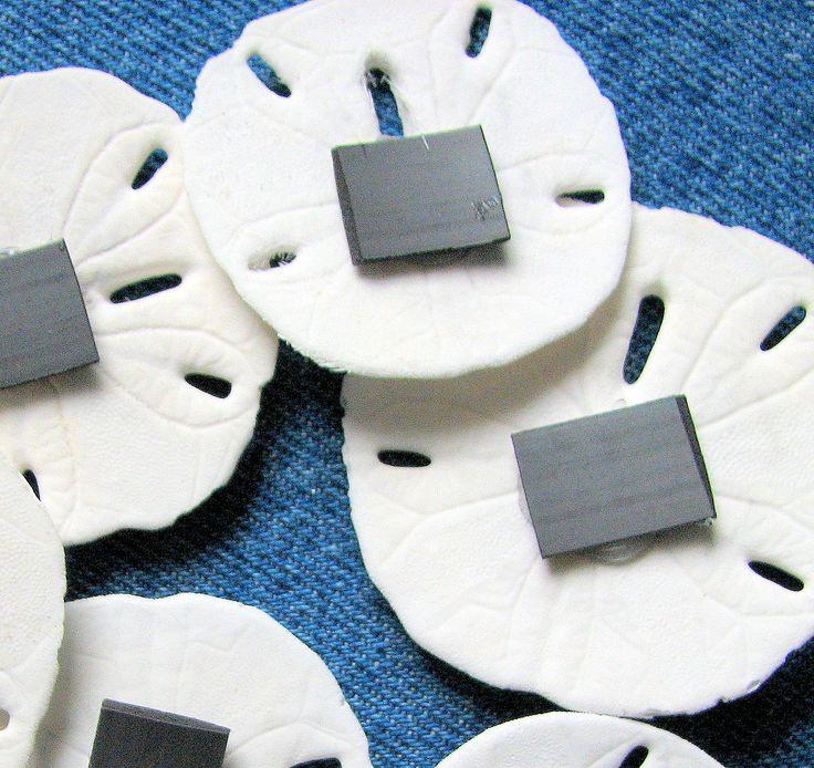 6pc Beach Decor Shell Magnets - Nautical Decor Sand Dollar Seashell Magnets, 6pc. $16.00, via Etsy.