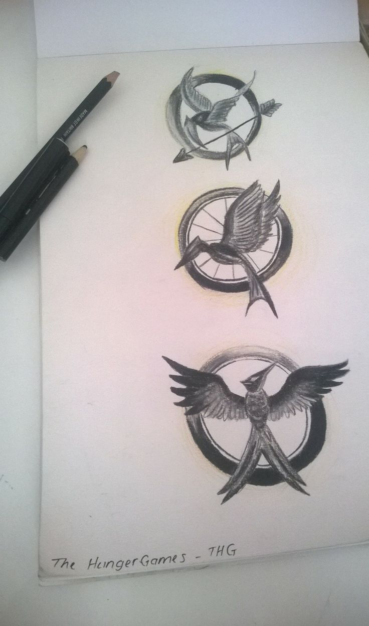 9 best the hunger games images on pinterest the hunger games mockingjay pin the hunger games catching fire mockingjay by snuggle bunny buycottarizona Gallery