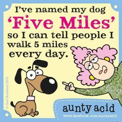 I walk 5 miles every day! LOL!  – Great Ideas
