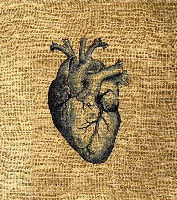 Fabric Image Transfer No 32 Human Heart Anatomy by KFcollection